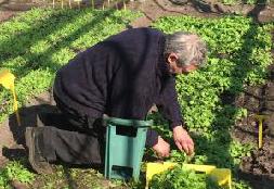 Leverancier van Voedselkollektief Amersfoort: Zorgboerderij Het Paradijs